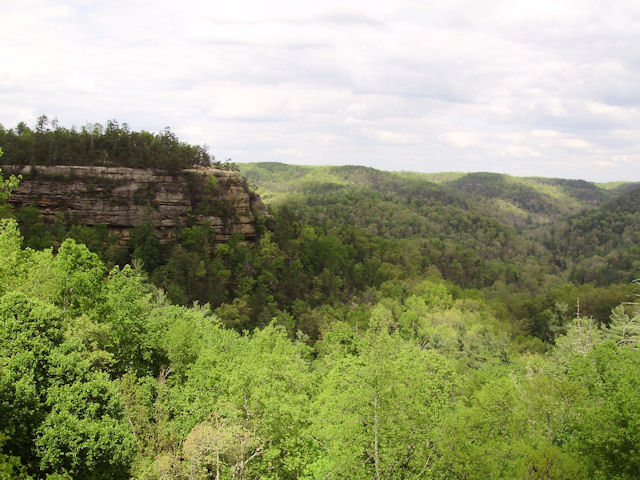 Mattsoldcars Com Photo Gallery Red River Gorge April